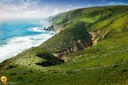 Part of Point Reyes National Seashore.. stunning landscape which is home to herds of wild Elk.